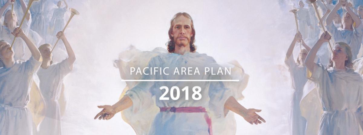 2018 area plan