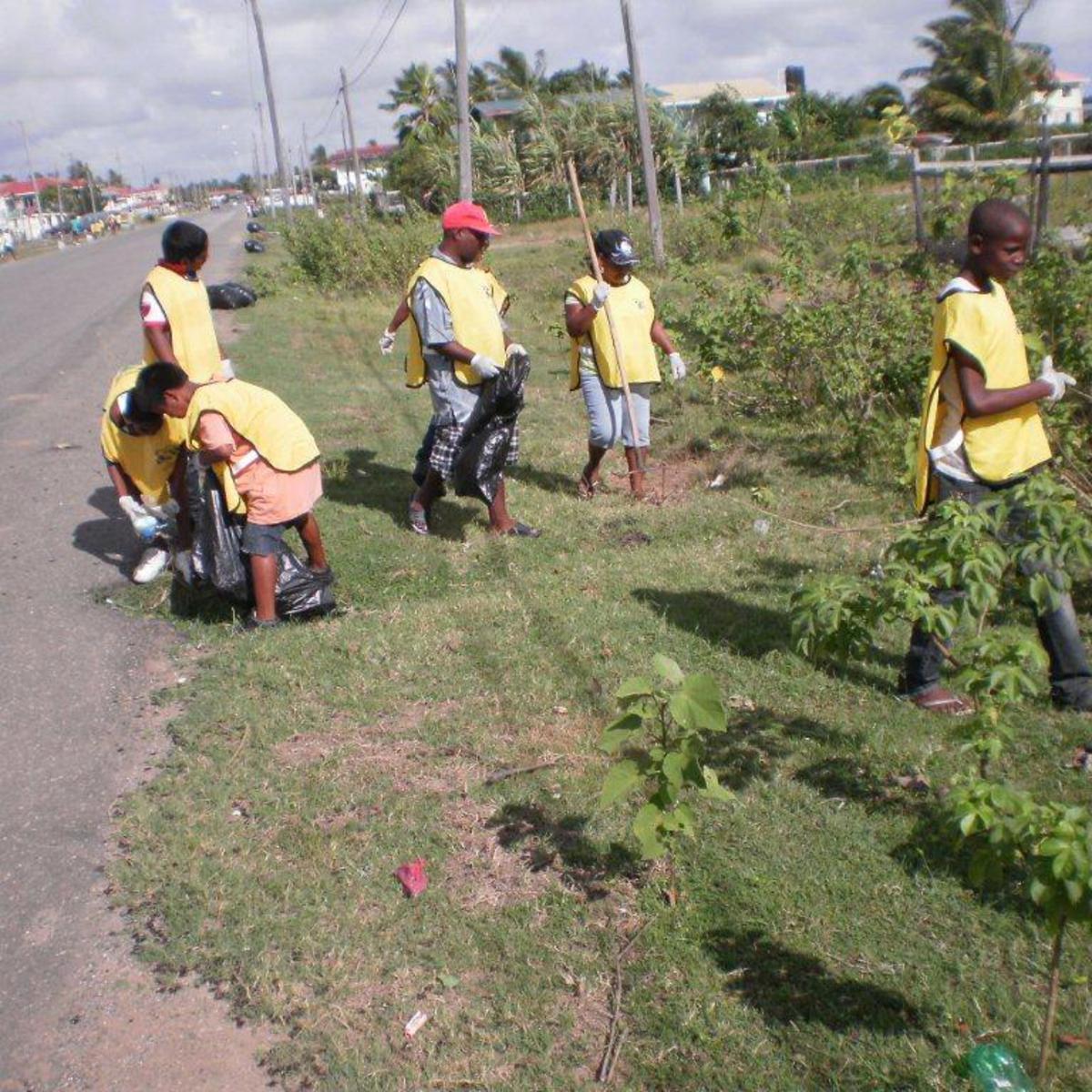 Actividad de Servicio de Guyana
