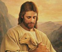 lost-lamb-art-lds-425852-gallery2.jpg