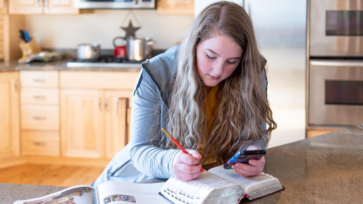 Seminary student gospel study