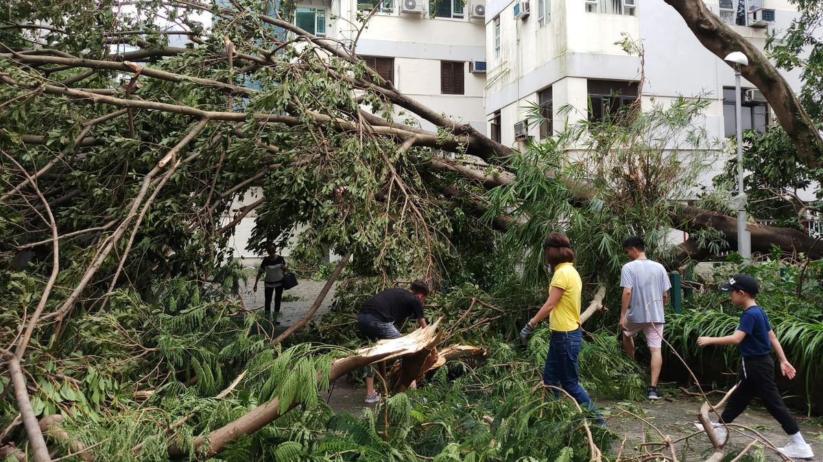 颱風山竹: 傳教士在全港提供服務3