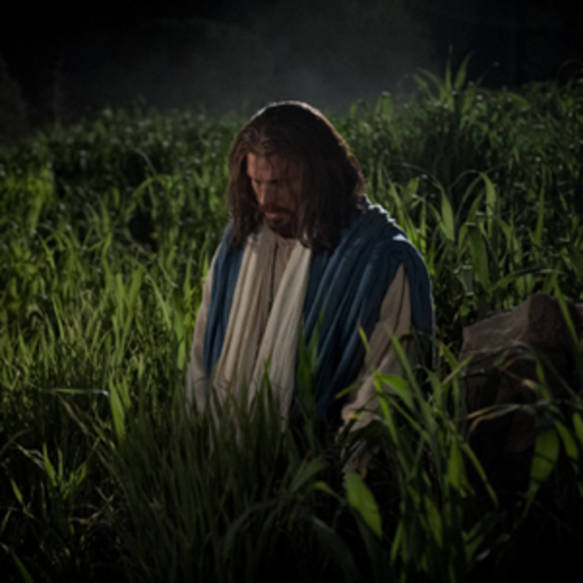 Jesus went to the Garden of Gethsemane to suffer for our sins and to pray to God.