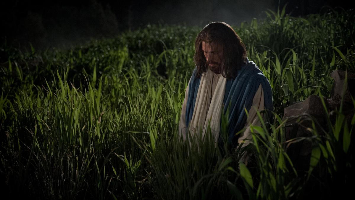 The Savior in the Garden of Gethsemane