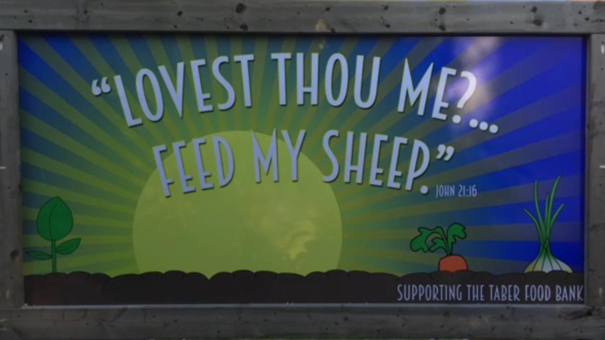 lovest-thou-me-feed-my-sheep