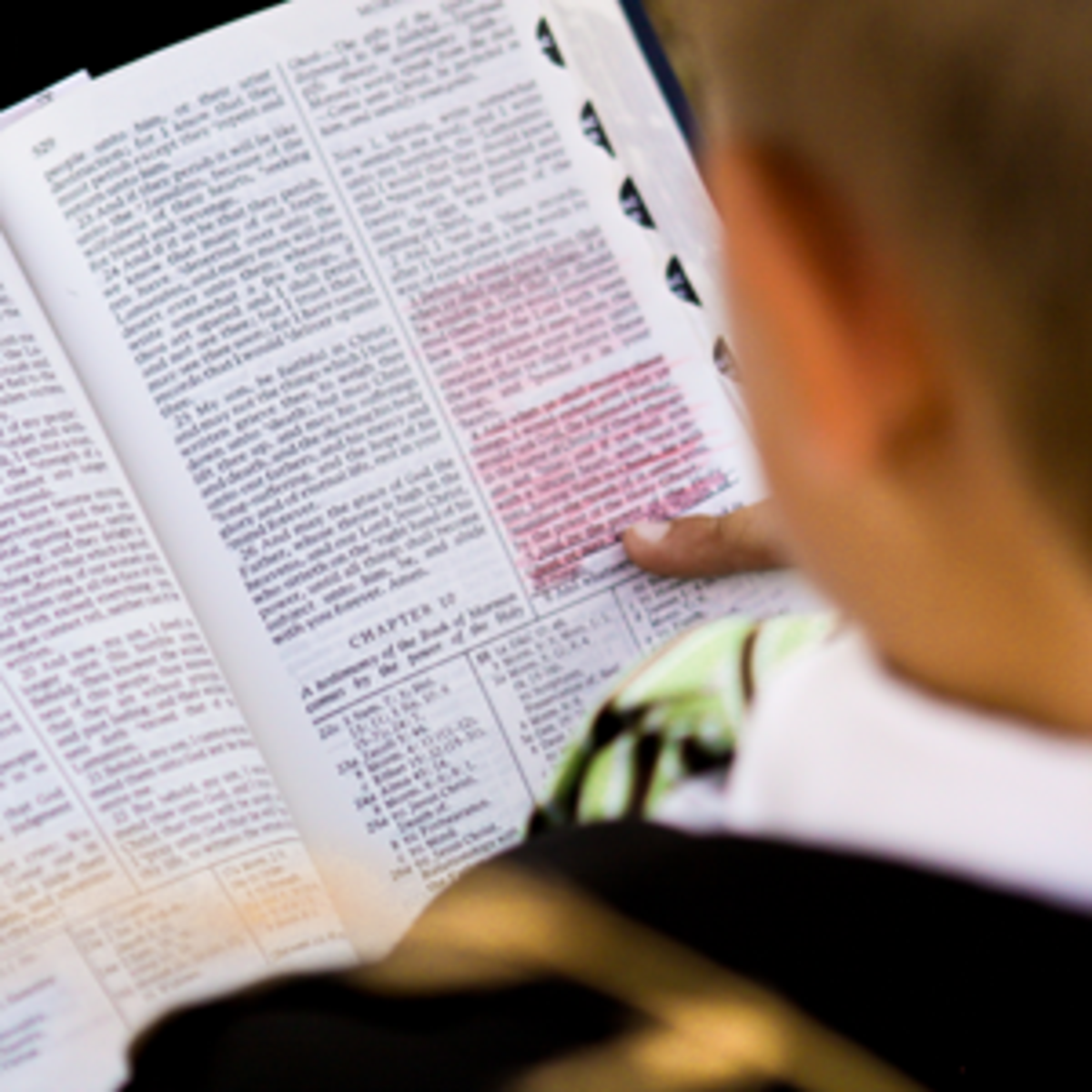 Studying the Book of Mormon