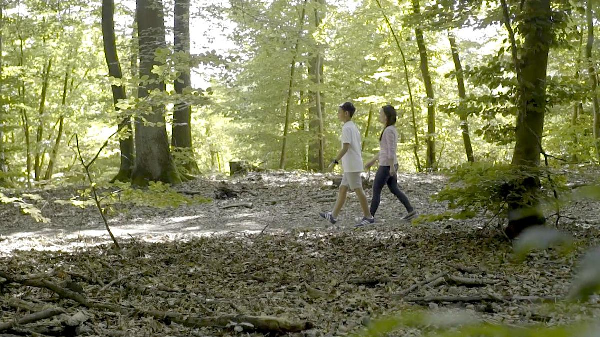 Twee mensen wandelen door het bos