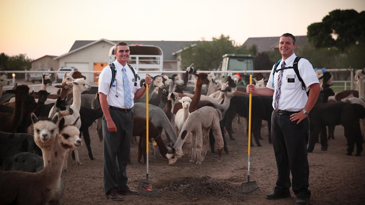 More than 70,000 Mormon missionaries labor around the world
