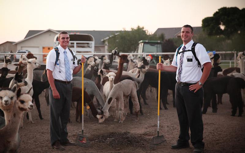 Po celém světě působí více než 70 000 mormonských misionářů.
