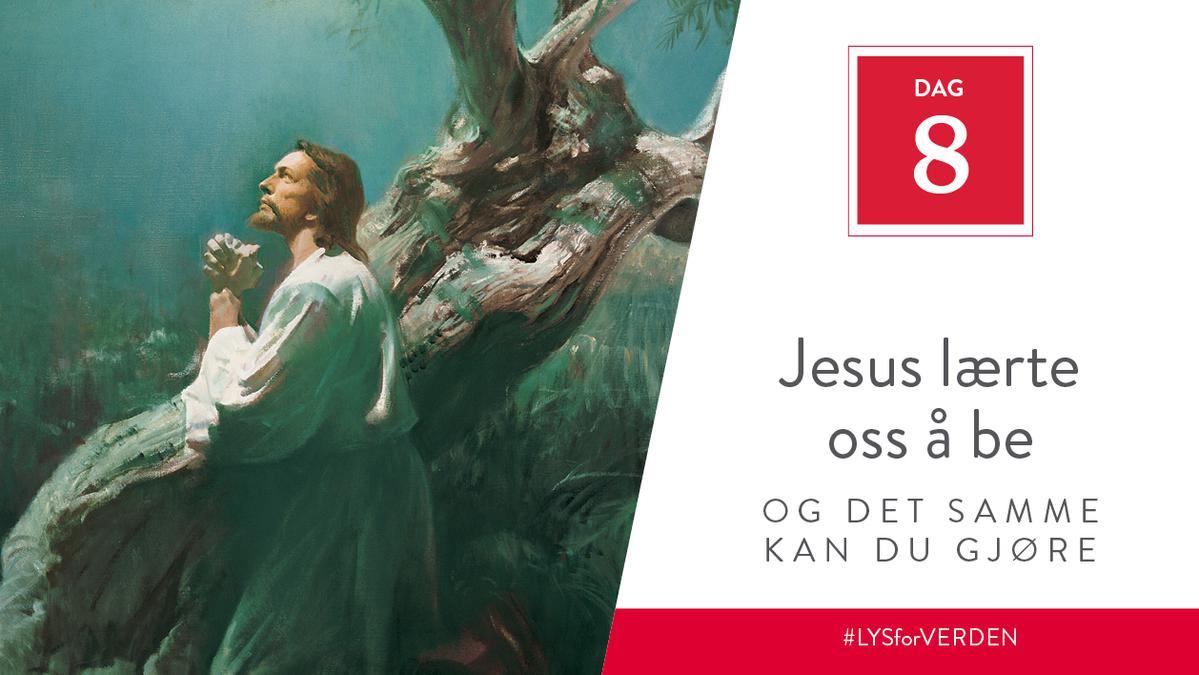 Dag 8 - Jesus ba for andre, og det samme kan du gjøre