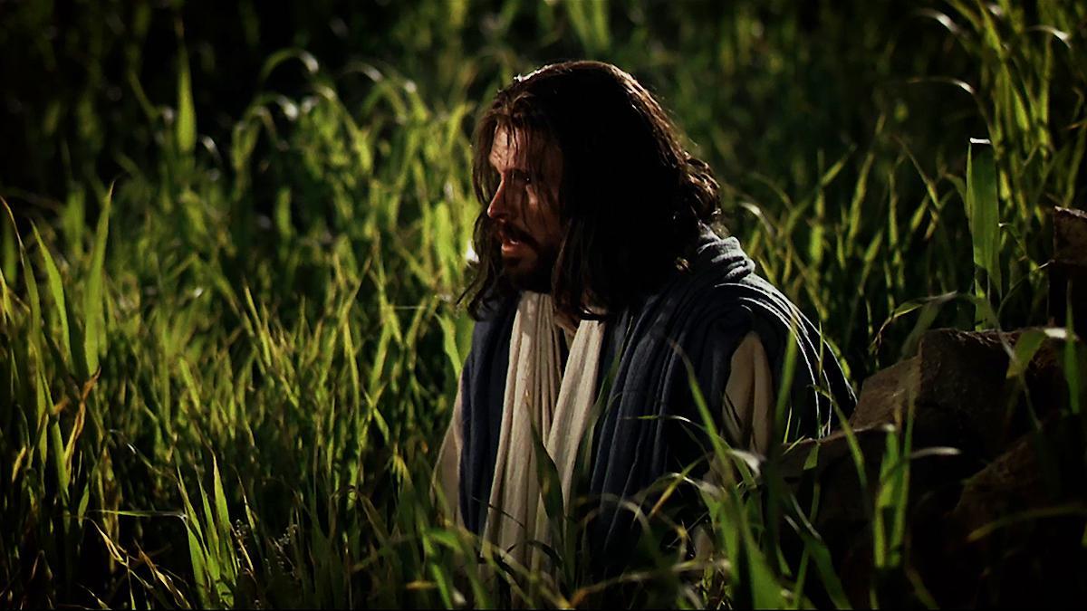 Ježiš Kristus kľačí v Getsemanskej záhrade.