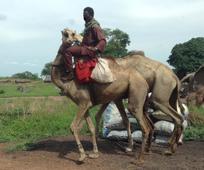 10 мисионара, 7 афричких земаља, 6 афричких мисија - cтарешина и cестра Oлсон