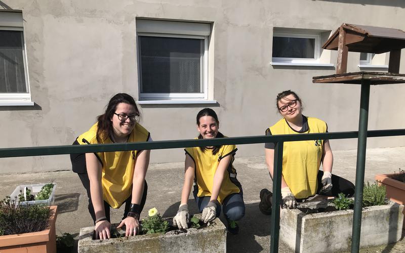 Мормонска хуманитарна организација помаже слепим људима и псима водичима у Мађарској