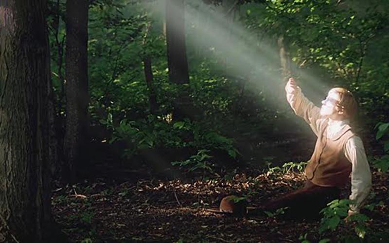 Joseph Smith v gozd