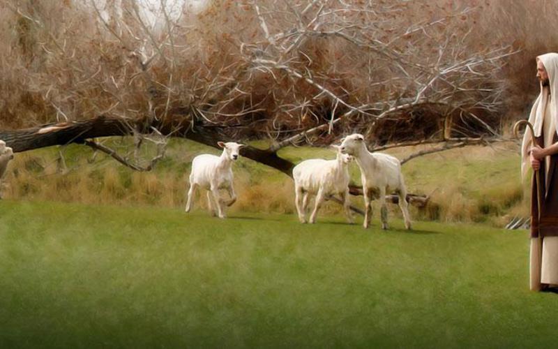 Pastýřská služba