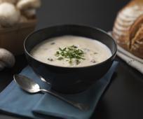 cream-soup-678153-print.jpg