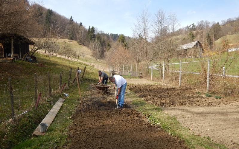 Zasadimo vrt Celjske veje