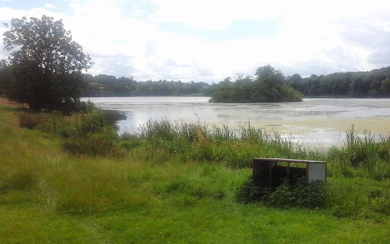Loughbrickland Lake