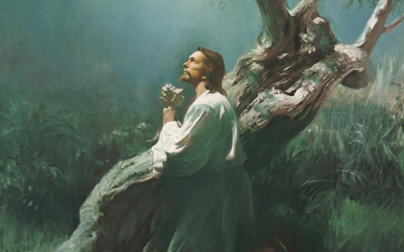 예수그리스도의 속죄를 통한 극복