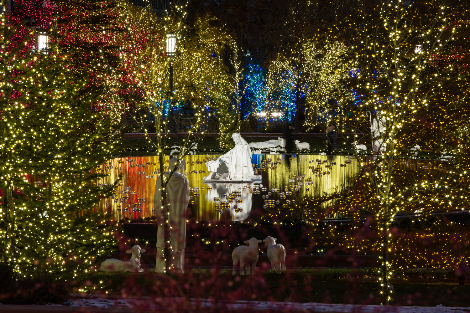 Temple-Square-Christmas-lights3-2015-resized.jpg
