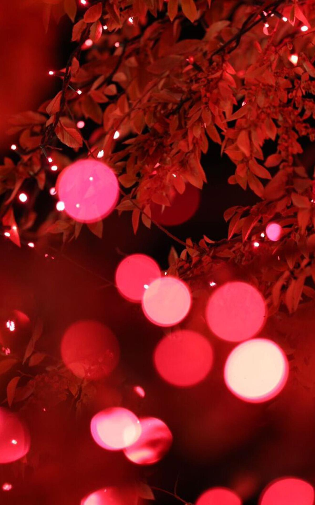 Ziemassvētku gaismiņas