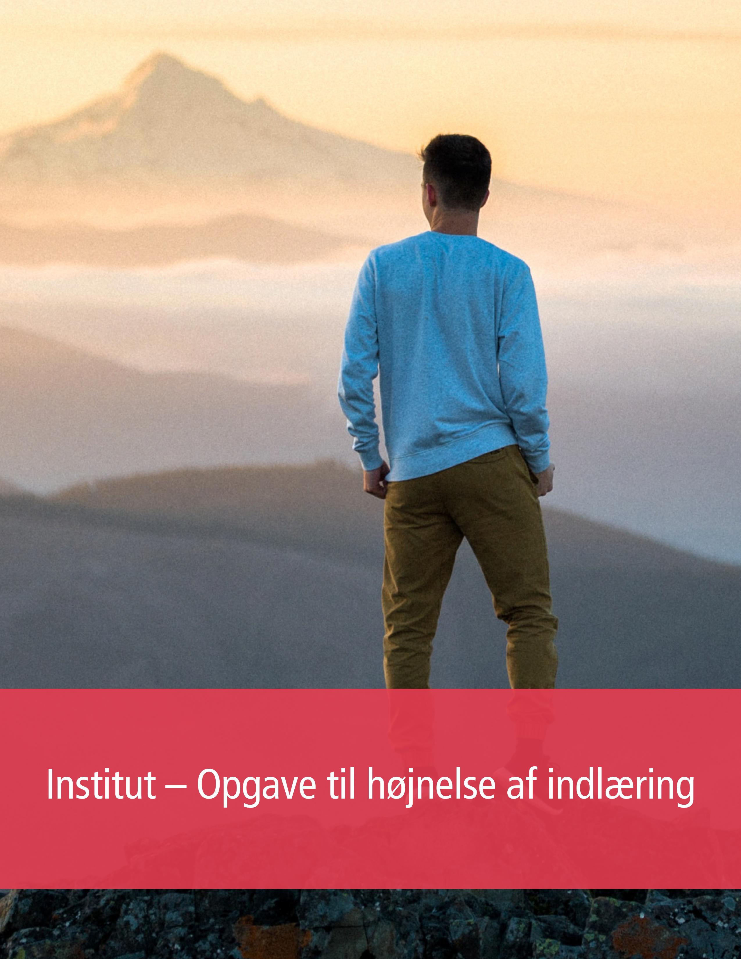 Institut – Opgave til højnelse af indlæring