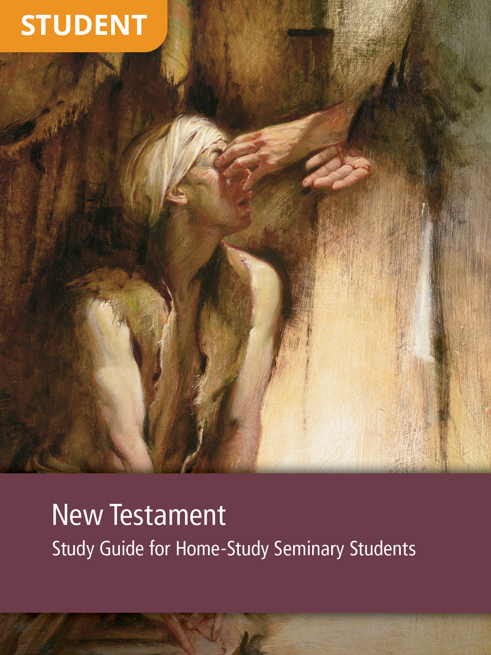 New Testament Study Guide for Home-Study Seminary Seminary Students